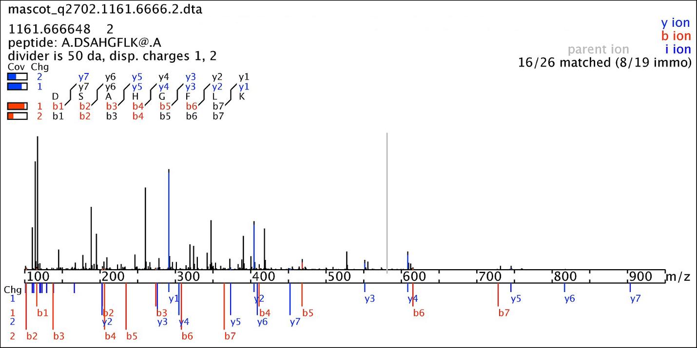 Пример применения хромато-масс-спектрометрии для разделения смеси лекарственных веществ